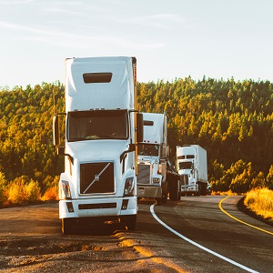 truck scales australia